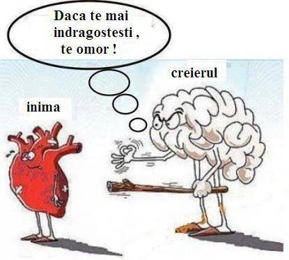 inima-c899i-creierul